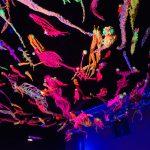 Matej Bizovičar: Ribogunci / Refufish